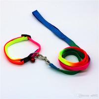 colliers arc-en-animal achat en gros de-Colliers de chien de marche réglables Colliers de nylon robustes et colorés en nylon avec petites clochettes