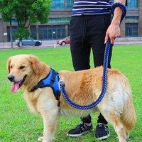 ingrosso grandi catene di cani-1 Set Big Pet Dedicated Dog Guinzaglio e collare Fili Intrecciati Corda Cani Collari Guinzagli Catena forte per cani di taglia grande Animali