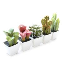 Wholesale green orange plant online - Artificial Succulents Desert Plant Bonsai Simulation Crafts Cactus Decorative Small Bonsai Suit Plant with Pot