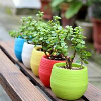 Wholesale Flower Garden Tools - Gardening Flower Pots Small Mini Colorful Plastic Nursery Flower Planter Pots Garden Deco Gardening Tool DHL Free Shipping 0703058