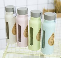 çift katmanlı cam kupa toptan satış-Buğday samanı çift katmanlı fincan buğday kokulu cam bardak Çevre buğday şişe cam baskı fincan özelleştirilebilir