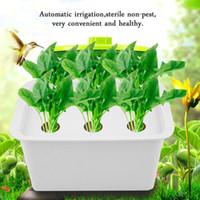 olla de burbujas al por mayor-Riego automático 6 hoyos Sistema de planta Sistema hidropónico Kit de cultivo Burbuja Jardín interior Caja de gabinete Macetas de cuarto de niños Macetas de plástico Groot