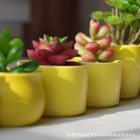 ingrosso bonsai che forma-Vasi da fiori del giardino della piantatrice dei bonsai da tavolino dei mini di forma quadrata ceramica succulente