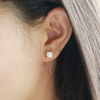 Wholesale Cow Plates - Classic cow head titanium steel 18K rose gold simulation single diamond earrings Simple female men earrings Japanese and Korean style