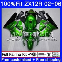 zx12r ninja kawasaki verkleidungen großhandel-Einspritzung für KAWASAKI NINJA ZX1200 ZX 12R 2002 2003 2004 2005 2006 224HM.29 ZX-12R 12 R 1200CC ZX12R 02 03 04 05 06 Glänzende grüne Verkleidung