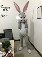 costumes de lapin de pâques personnalisés achat en gros de-Costumes de mascotte de lapin de Pâques professionnels personnalisés hommes et femmes vêtements de fête fantaisie Holloween Carnaval