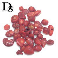 grava de cristal rojo al por mayor-50g Natural Red Coral Gravel Cayó Piedras Crystal Jade Chips Pulidos Chakra Océano Mar Planta Minerales Regalos Decoración