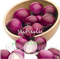 посадка лука оптовых-100 семян / мешок фиолетовый лук семена, посадка лука семена, органические фамильные семена овощных культур, сладкий и вереск растение для дома сад