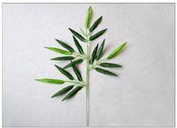 ingrosso bambù artificiale-Nuovo design 20 pezzi piante di foglie di bambù artificiale rami di alberi di plastica decorazione piccola plastica di bambù 20 foglie accessori fotografici t4