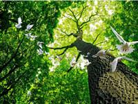 pinturas do sol venda por atacado-Mural de parede papel de parede HD tridimensional árvore estética Sunshine Dove zenith pinturas no teto