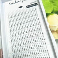 Wholesale korean fans - Seashine 2D Y Volume Lash Extension 0.07 0.10 Classic Eyelashes Extension South Korean Silk Volume Fans lashes 8mm-15mm Top quality