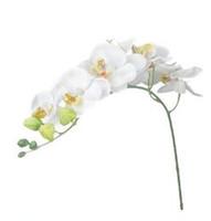 ingrosso farfalle artificiali bianche-Nuovo display di moda Fiore matrimonio 3 pezzi Artificiale Farfalla Orchidea Fiore Pianta Decorazione della casa (Rosa + Bianco + Viola) Fiore