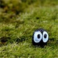 ingrosso miniatura di polvere-Fai da te Micro Paesaggio Fatina Giardino Miniature Bottiglia ecologica Ornamenti paesaggistici Carino polvere Elfi Vendita calda 0 5dd Ww