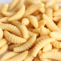 señuelos grub worm al por mayor-¡¡Promoción de marca!! VENTA CALIENTE !! 50 UNIDS 2 cm 0.3g gusano Grub Cebos Señuelo Suave Olor Gusanos Glow Shrimps Señuelos de Pesca