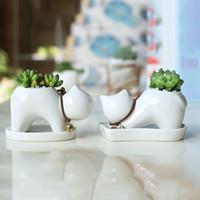 ingrosso vasi di piante verdi ceramiche-American Village Style Ceramics Flowerpot Carnosa Decorazione domestica Lovely Cartoon Cat Green Planting and Potted Plants 6 8xn ff