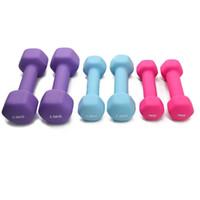vücut zayıflama fişleri toptan satış-Vücut Zayıflama Kadınlar Spor Dumbbells 1 pair Egzersiz Ağırlıkları Spor Ekipmanları Musculation Kaymaz Sağlıklı Dambıl Tutmak Yeni 45 hz ZZ
