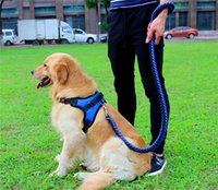 Wholesale strong dog collars leashes for sale - Group buy NEW Design Set Big Pet Dedicated Dog Leash And Collar Strands Plaited Rope Dogs Collars Leashes Chain Strong For Large Dogs Animals