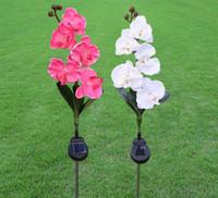 ingrosso piantare piante di tulipani-IP44 Impermeabile LED Solar Path Light piante Outdoor Garden Prato LED luce solare rosa / giglio / tulipano / farfalla orchidea
