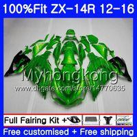 kawasaki ninja zx14r venda por atacado-Injetor de luz verde Para KAWASAKI NINJA ZX 14R preto 2012 2013 2014 2015 2016 225HM.32 ZX1400 ZX-14R ZZR1400 ZX14R 12 13 14 15 16 Carenagens
