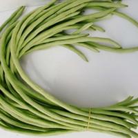 potes de plantas chinesas venda por atacado-Feijão de sementes de hortaliças chinesas, feijão Longo sementes vaso de plantas para casa jardim 20 partículas / saco
