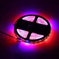 Wholesale Led Strip Lights For Aquarium - 5M Waterproof LED Strip Grow Lights 5050 SMD Red Blue Growing Lamp for Aquarium Greenhouse Hydroponic Plant Garden Flowers
