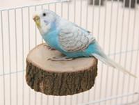 ingrosso supporti per giocattoli-Gnaw Log Pier Shape Toy Pappagallo in legno Piattaforma per uccelli Giocattoli rimovibili Molari giocattolo rotondo con vite di montaggio 16ld jj