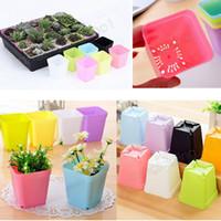Wholesale planter plates - 7*7*8cm Bonsai Planters Plastic Table Mini Succulents Plant Pots and Plate Gardening Vase Square Flower Pot GGA570 200pcs