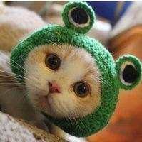 ingrosso rane fatte a mano-2019 commerci all'ingrosso Handmade libero Handmade DIY Pet Dog Cat Design creativo Frog Hat caldo cappello lavorato a maglia regalo