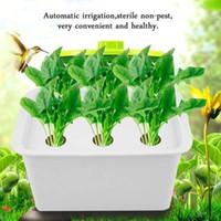 am schnellsten wachsende pflanzen großhandel-6-Loch-Werksgelände Hydroponik-System wachsen Kit Blase Indoor Gartenschrank Box Kindergarten Töpfe Automatische Bewässerung Schnelles Schiff