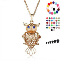 Wholesale Hollow Owl Necklace - 2018 big owl pearl accessories Disffuser Dolphins Necklace Locket Essential Oil Diffuser Necklaces Hollow out Locket Cage Pendant Necklace