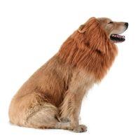 medio animal al por mayor-Adornos para el cabello Halloween Perro León Melena - Realista Complemento divertido León Melena para disfraces de perro Peluca de león para perros medianos y grandes
