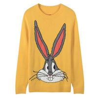 синий зайчик оптовых-Бесплатная доставка 2018 зеленый / желтый / синий с длинными рукавами ошибки кролик вышивка Женские свитера Марка же стиль пуловеры женщины DH081436