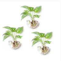 lebende vasen großhandel-3 Teile / satz Wand Blase Terrarien Glaswand Vase Innen Pflanzer für Blumen oder Wasserpflanzen Wohnzimmer Wand Garten Geschenke für Freunde