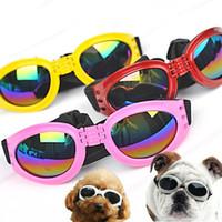 ingrosso occhiali da cucina in plastica-Fashion Pet Occhiali da sole Occhiali da sole pieghevoli colorati per cani con cinturino elastico Occhiali in plastica Vendita calda 5 2jn B