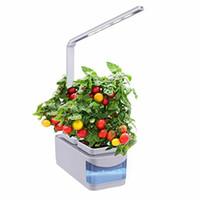 ingrosso semi di erbe crescenti-Sistema di giardinaggio indoor Hydroponic Herb Smart Garden Growing System con dimmerabile LED Grow Light, lampada da scrivania multifunzione (semi non inclusi)