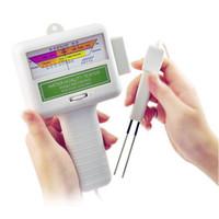 pool wasser tester großhandel-Schwimmbadwasser Chlorinhalt Tester Qualitätsmonitor Tragbare PH Tester Wasserdichte Digital pH Wasserqualitätsmessung