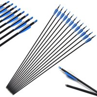 Wholesale hunt bow for sale - Group buy 12pcs inch Practice Archery Carbon arrows Hunting Arrow For Compound Recurve Bow Outdoor camping hunting training special bow