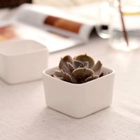 vaso branco simples venda por atacado-Flowerpot branco Originalidade Tapeçaria Cerâmica Carnuda Botânica Vaso Estilo Simples Cerâmica Vasos de Flores Frete Grátis