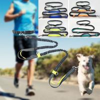jogging leash venda por atacado-Mãos Livres Da Cintura Do Cão Trela Com Dupla Bungees Dual-Handle Bungee Leash Com Cinto Ajustável Para Correr Jogging Andando HH7-1176