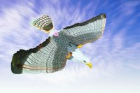 Wholesale crane electric - Electric eagle toy, hovering crane flying eagle,360 flying with flashing and sound,so vivid eagle electronic Toys