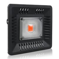 étincelant conduit pousser des lumières achat en gros de-Led Cultiver La Lumière Plein Spectre 100W IP67 COB Étanche Cultiver Lampe LED pour Plante Intérieure Extérieure Hydroponique À Effet de Serre Éclairage