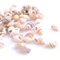 ingrosso fai braccialetti fatti a mano perline-Naturale Conch Shell Perline Lumache a strisce Parti Handmade Gioielli Donna Collana Bracciale Orecchino femminile Fare Fai da te Regalo 8dy gg