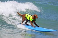 Wholesale Life Size Female - Dog Pet Water Swimming Life Vest Jacket Clothes Preserver Breathable Dog Life Jacket Vest Safety Swimwear Size S,M,L Green Yellow