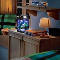 lumières nocturnes multicolores achat en gros de-1Pièce Multicolore Rétro Aquatique Mini Jelly Fish Tank LED Eau Lampe Mood Night Light Nouveauté Décoratif Gelée De Poissons Lampe
