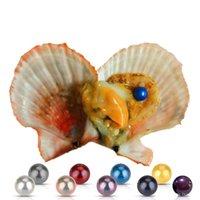 coquille d'huître arc-en-ciel achat en gros de-Akoya Pearl Oyster 2018 DIY rondes coquilles d'eau salée arc-en-ciel 6-7mm naturelles Cultivées dans des huîtres fraîches moules perlières