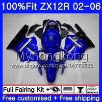 kawasaki zx12r carenagens azul venda por atacado-Injecção Para KAWASAKI NINJA ZX1200 1200CC ZX12R 02 03 04 05 06 224HM.0 ZX 12R 12 R ZX-12R 2002 2003 2004 2005 2006 Fábrica de Carenagem azul Quente