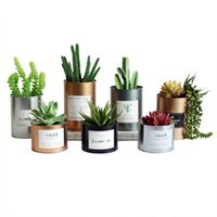 Wholesale paint flower pots - Tinplate Metal Flower Pot Succulent Creative Painting Iron Storage Container Metal Crafts Home Tabletop Decoration