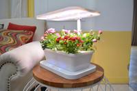 luz de película led al por mayor-Planta familiar Granja Nutriente Film Technique Sistema hidropónico NFT Horticultura iluminación hidropónico Panel LED Grow Light