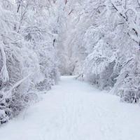 baby fotos schön großhandel-Schöne Winter Scenic Fotografie Backdrops Gefrorene Schnee Bedeckt Wald Bäume Straße Baby Mädchen Familie Fotoshooting Hintergründe