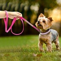 xs collar de gato al por mayor-5 colores Ajustables de cuero de gamuza Juego de correa de collar para perros Collar de diamantes de imitación suave Pequeño mediano Perros Gatos Collares Correas para caminar Xs S M